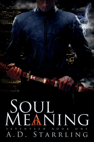 Soul Meaning (2014)