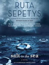 Image result for salt to the sea cover