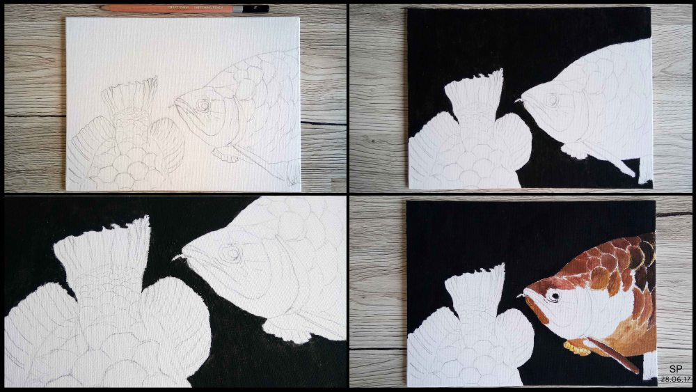 come undone fish drawing steps 1