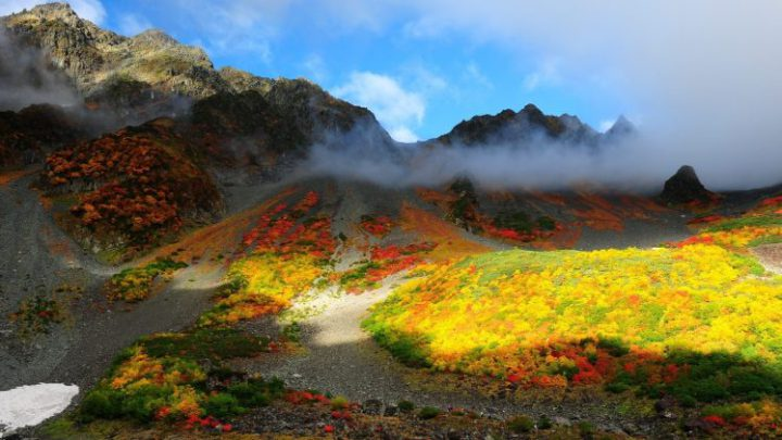 191487-nature-landscape-trees-forest-fall-colorful-mountain-hill-mist-clouds-sunlight-snow-rock-stones-748x421