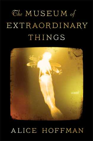 The Museum of Extraordinary Things (2014)
