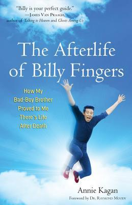 The Afterlife of Billy Fingers: How My Bad-Boy Brother Proved to Me There's Life After Death (2013)