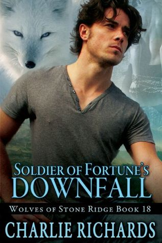 Soldier of Fortune's Downfall (2013)