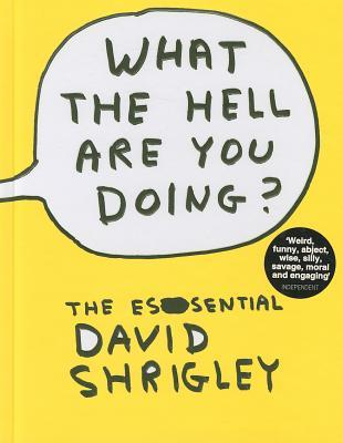 What the Hell Are You Doing?: The Essential David Shrigley (2010)