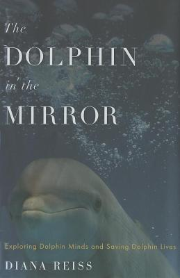 Dolphin in the Mirror (2011)