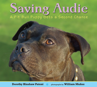 Saving Audie: A Pit Bull Puppy Gets a Second Chance (2011)