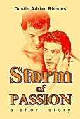 Storm of Passion: A Short Story (2011)