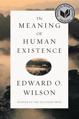 The Meaning of Human Existence (2014)