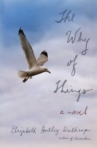 The Why of Things: A Novel (2013)
