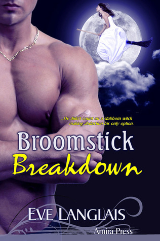 Broomstick Breakdown (2010)