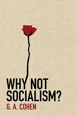 Why Not Socialism? (2009)