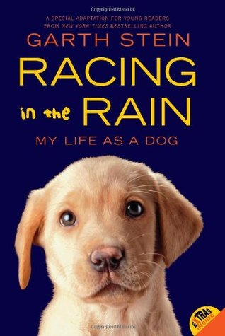 Racing in the Rain: My Life as a Dog (2011)