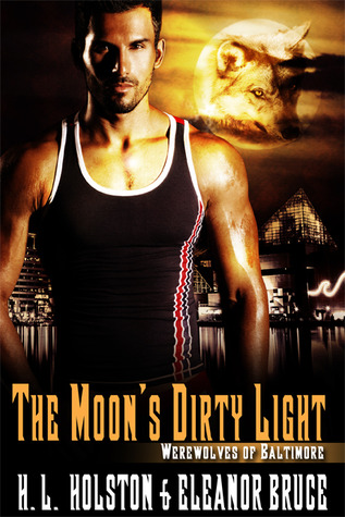 The Moon's Dirty Light (2013)