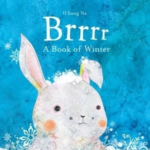 Brrrr: A Book of Winter. by Il Sung Na (2010)
