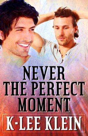 Never The Perfect Moment (2014)