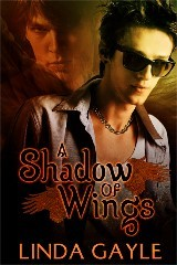 A Shadow of Wings (2013)