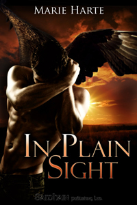 In Plain Sight (2000)