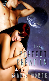 The Perfect Creation (2008)