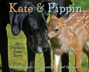 Kate & Pippin: An Unlikely Love Story (2012)
