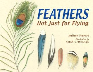 Feathers: Not Just for Flying (2014)