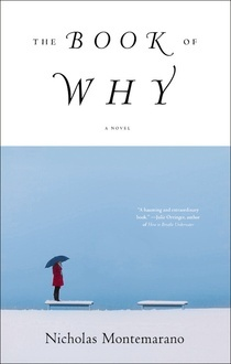 The Book of Why (2013)