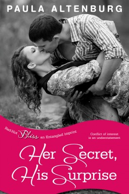 Her Secret, His Surprise (2014)