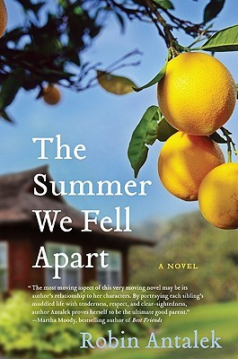 The Summer We Fell Apart