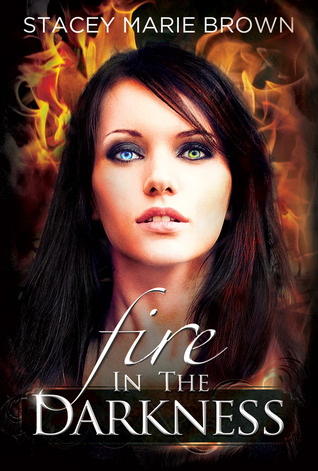 Fire in the Darkness (2013)
