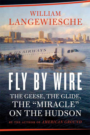 Fly by Wire: The Geese, the Glide, the Miracle on the Hudson (2009)