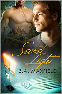 Secret Light (2011)