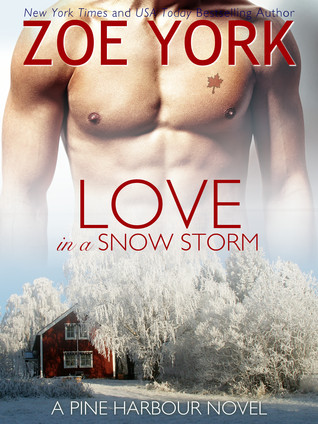 Love in a Snow Storm (2000)